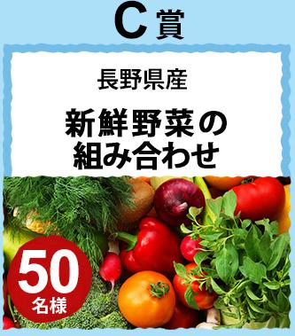 C賞 長野県産 新鮮野菜の組み合わせ 50名様