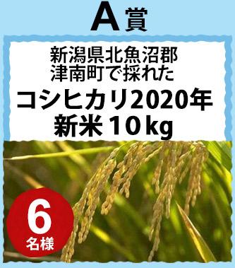 A賞 新潟県北魚沼郡津南町で採れたコシヒカリ2020年新米10kg 6名様