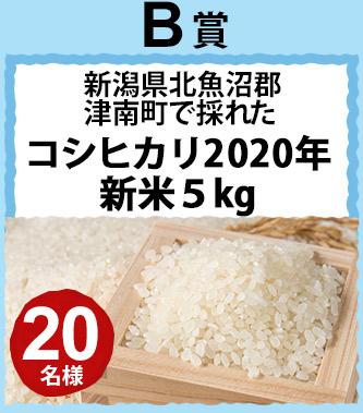 B賞 新潟県北魚沼郡津南町で採れたコシヒカリ2020年新5kg 20名様