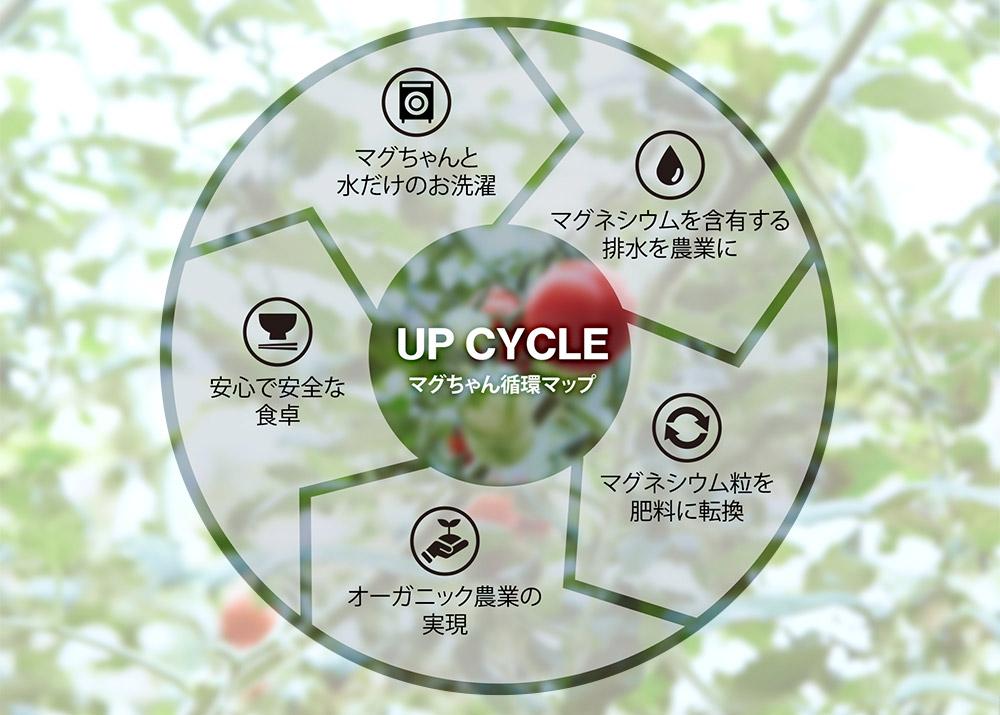 マグちゃん循環マップ